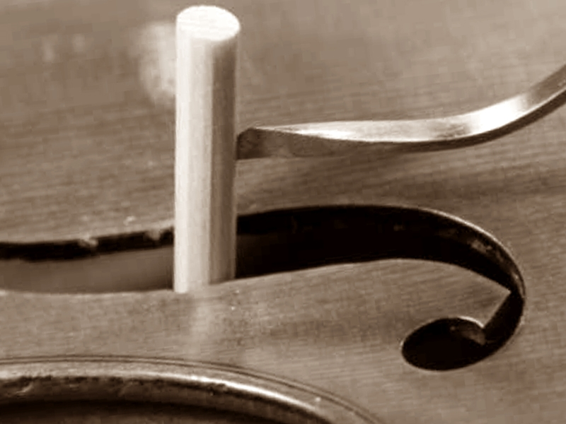 alma violin